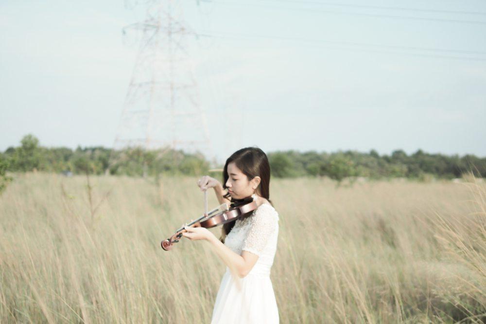 Violin in an open field